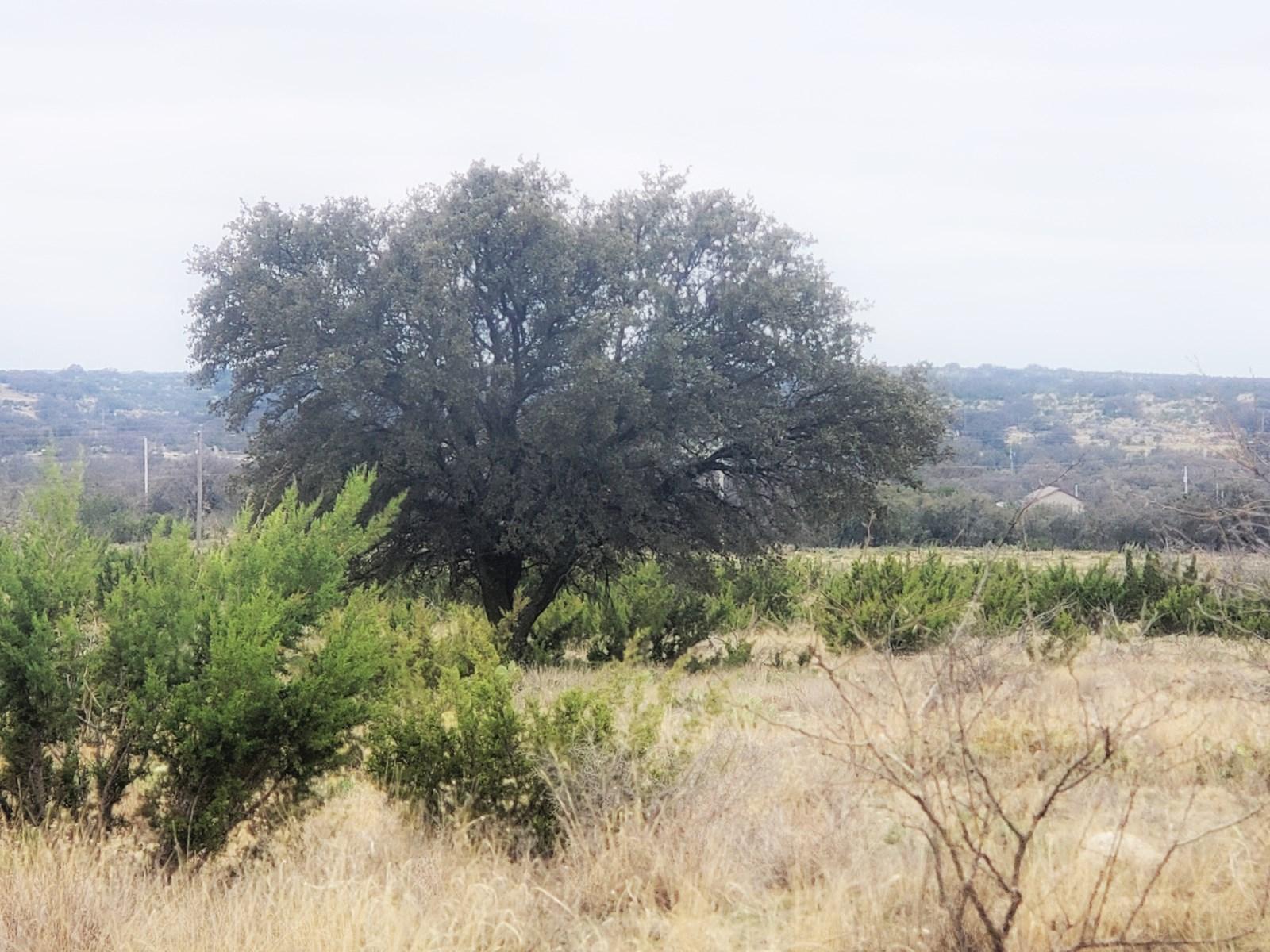 Land near San Angleo, TX