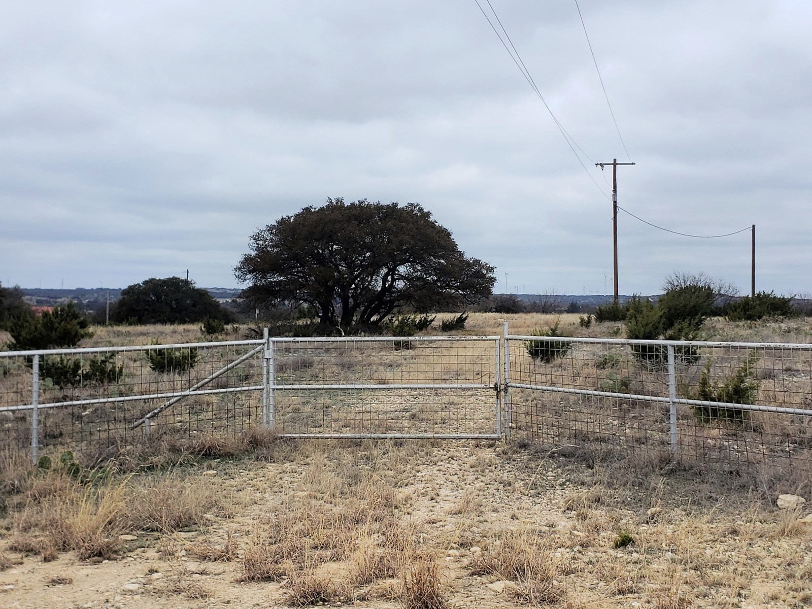 west Texas land for sale near San Angelo, TX