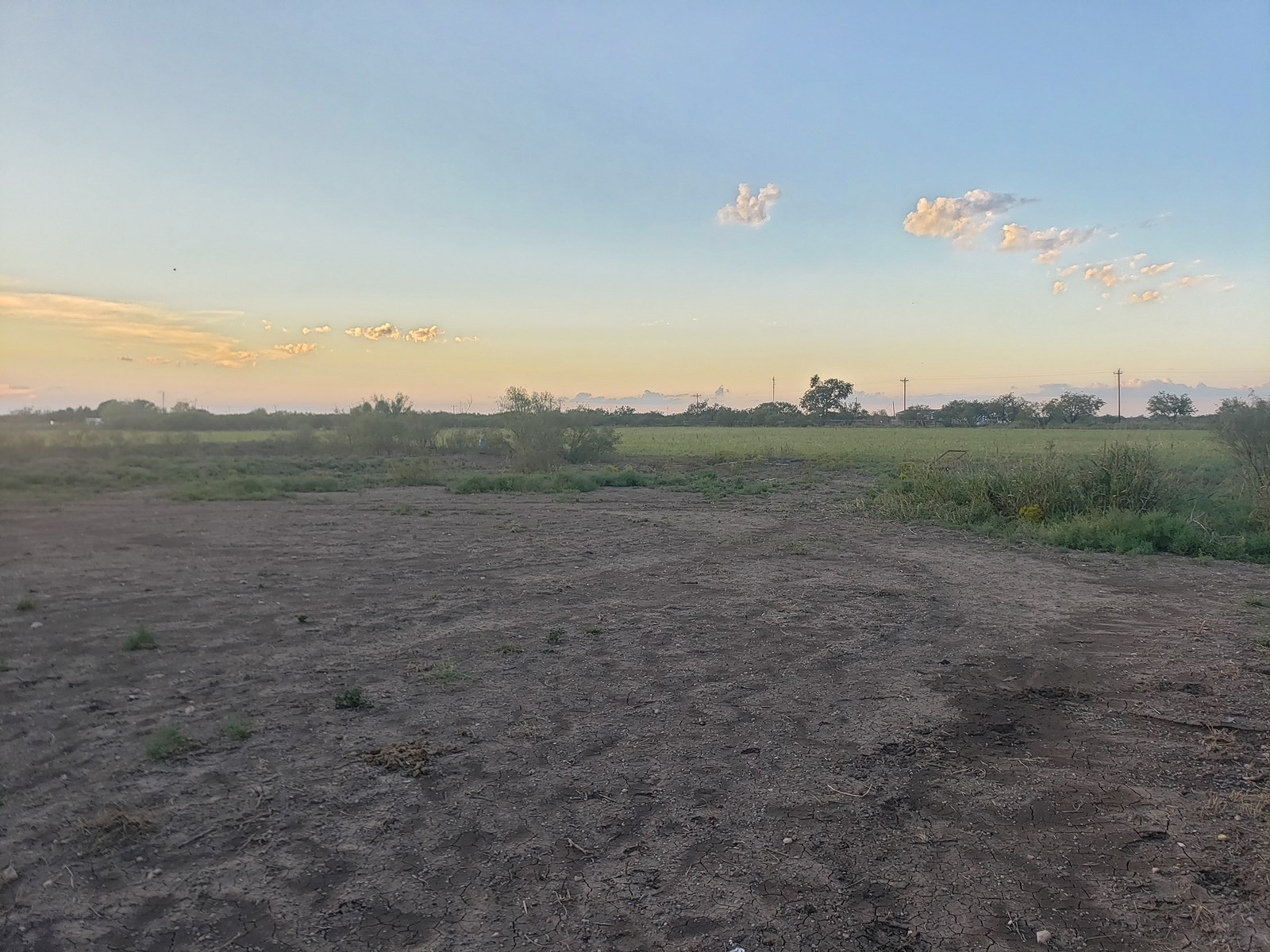 Horse Property in Eldorado, TX
