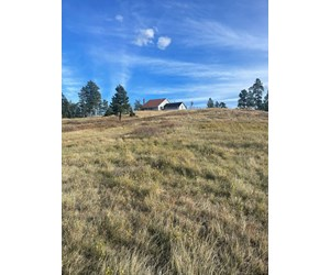 Mountain View Montana Horse Property / Country Home for sale