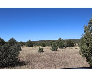 Beautiful Westwood Ranches Property