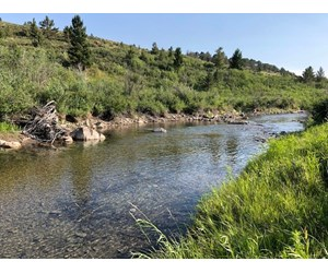 Central Montana Land on Judith River For Sale