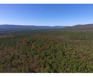 Blue Mountain 6.9 Acres Inside National Forest