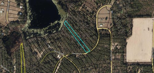2.4 Acre Lakefront Lot in North Central Florida