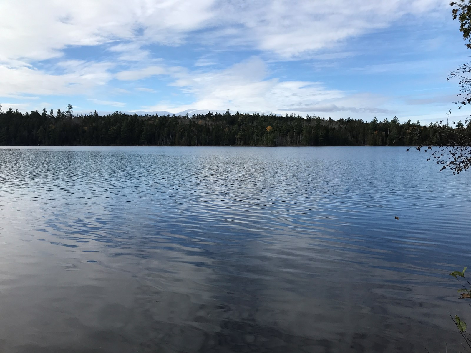Lakeside Hunting Camp for Sale