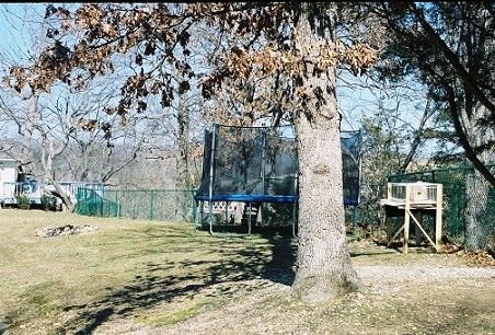 Backyard With Protective Fencing For Children
