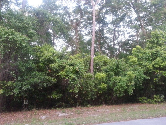 LOT FOR SALE - BUCK BAY S/D - CHIEFLAND, FLORIDA