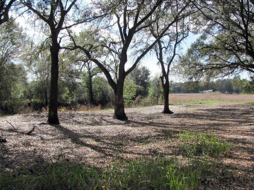 North Central Florida-buildable Home Lot For Sale