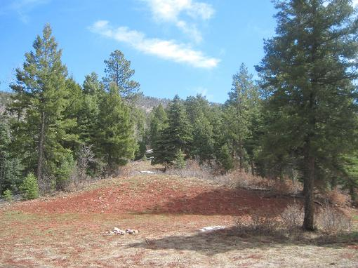 High Mountain Parcel In Desirable Development
