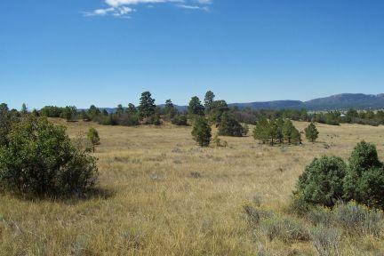 W Of Chama Nm- Bldg Site- Mt Views - Horses- 10 Ac