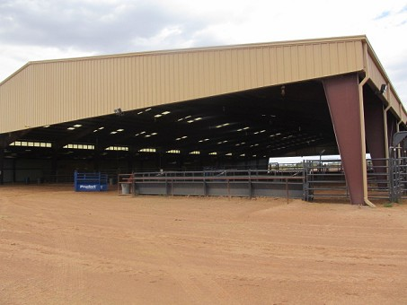 Horse Training Center In Southern Nm