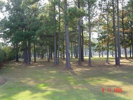 Albemarle Plantation Lot For Sale
