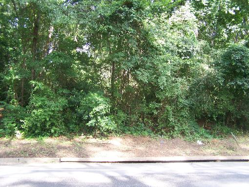 RESIDENTIAL OR COMMERCIAL LOT IN WINNSBORO, SC