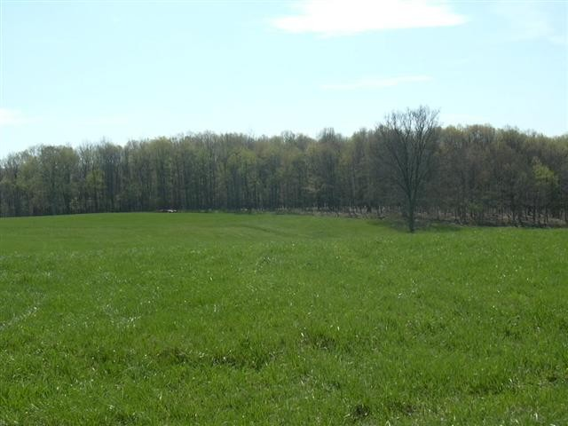 2.02 Acres in Augusta, WV