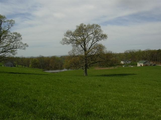 2 Plus Acre Lots With Owner Financing