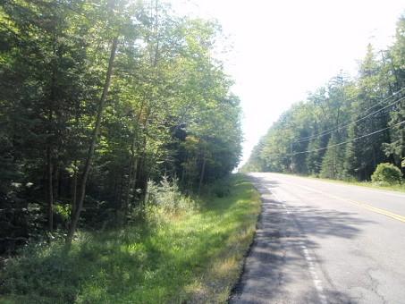 Wooded Land In Adirondacks