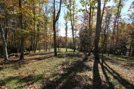 Acreage Near New River In Blue Ridge Mountains