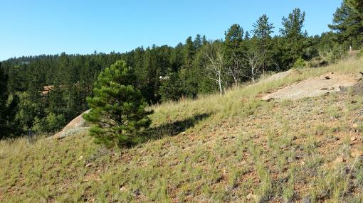 Colorado Mountain Lot for Sale - Build Vacation Home