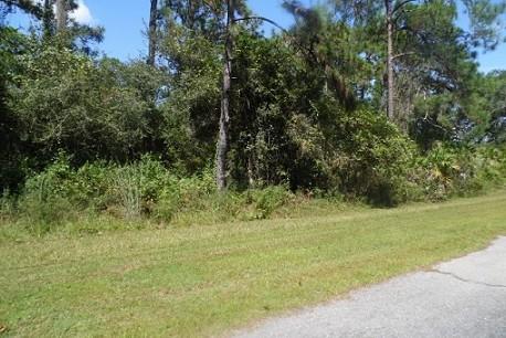 LAND FOR SALE, POLK COUNTY FLORIDA, CENTRAL FL