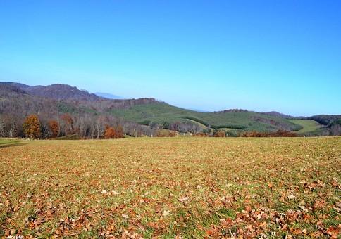 Beautiful Mountain Lot! Gorgeous Mountain Views!