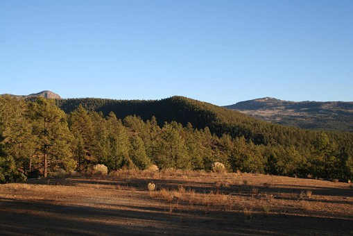 MOUNTAIN ACREAGE IN NORTHERN NM PRIVATE PONDS RIVER VIEWS