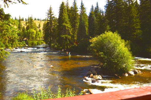 CO Fly Fishing Resort For Sale