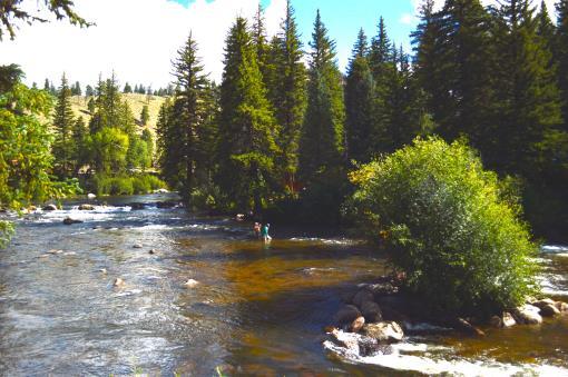 Gunnison CO Fly Fishing Resort For Sale