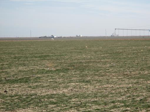Kansas Farm Auction Irrigated & Dryland