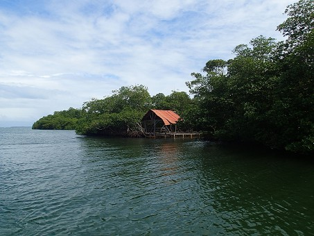New Price for Bocas del Toro Fixer Home + 56 acres