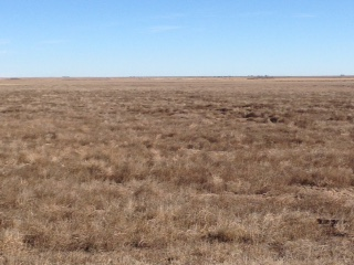 Investment Land Opportunity In Grant County, Ks