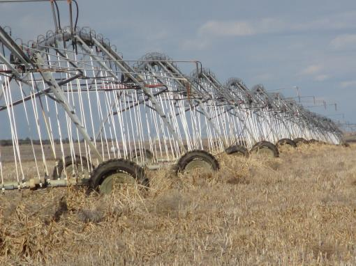 Auction Farm Irrigated 640 Acres Tract 4