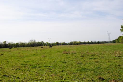 Cattle Recreation Acreage For Sale Southeastern Ok