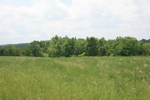 6.56 Acres Of Land In Patrick County, Virginia