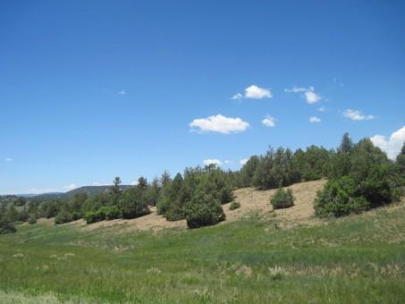 Mt Views/rolling Hills/no Nm/10 Ac/horses/nr Chama