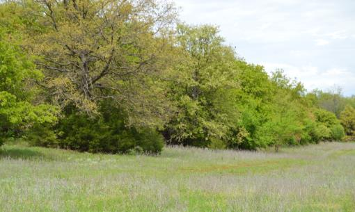 Recreational Devleopment Land For Sale Oklahoma