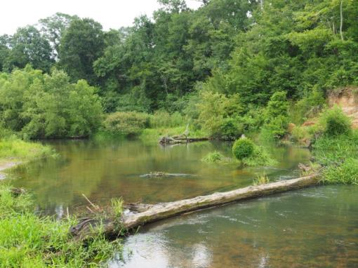 Mississippi Hunting Property With River & Timber