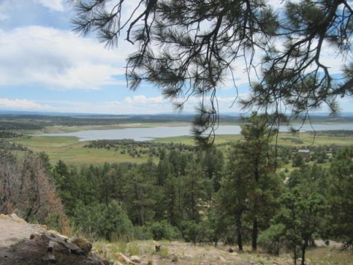 Views Of Heron Lake/small Cabin/trees/northern Nm