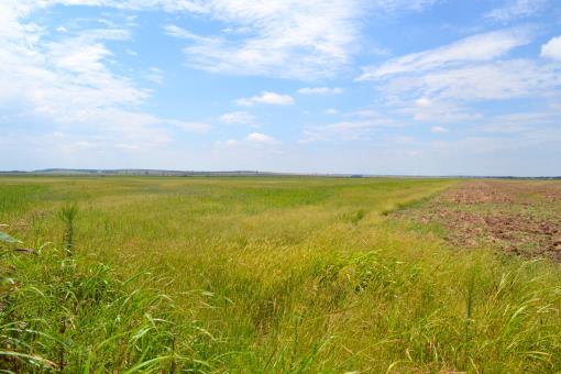 Land Auction Acreage Blaine County Oklahoma