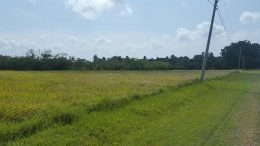 Panama Real estate Country lot for Sale, Chame PANAMA