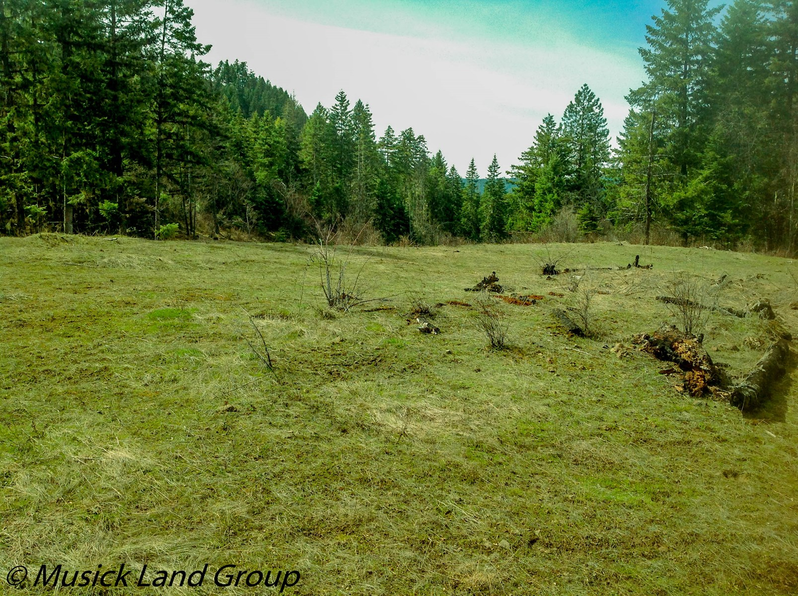 Building Lot Land for sale by Dworshak Reservoir Orofino ID