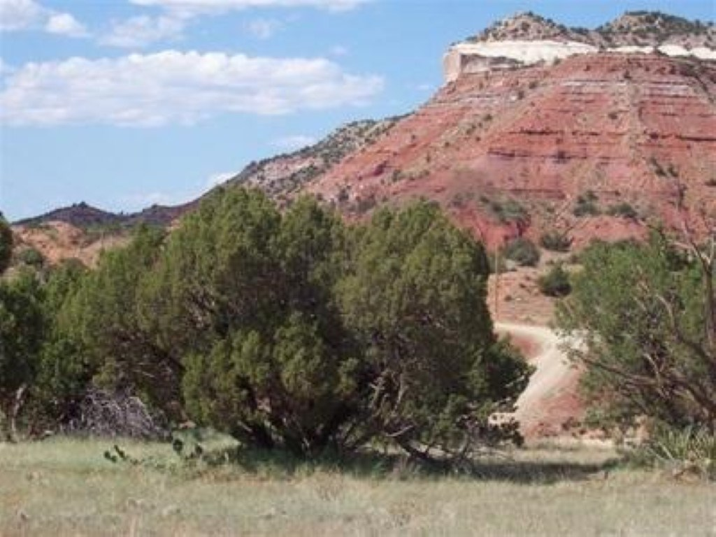 For Sale 140 Acres Bull Canyon Ranches Guadalupe County Nm