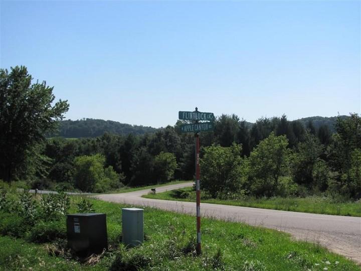 Apple Canyon Lake Lot For Sale Jo Daviess County