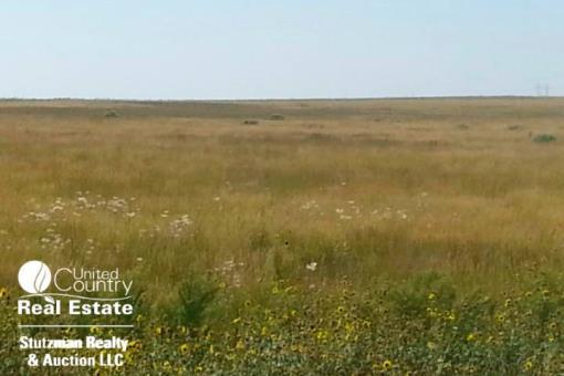 Western Kansas Pasture / Expired Crp