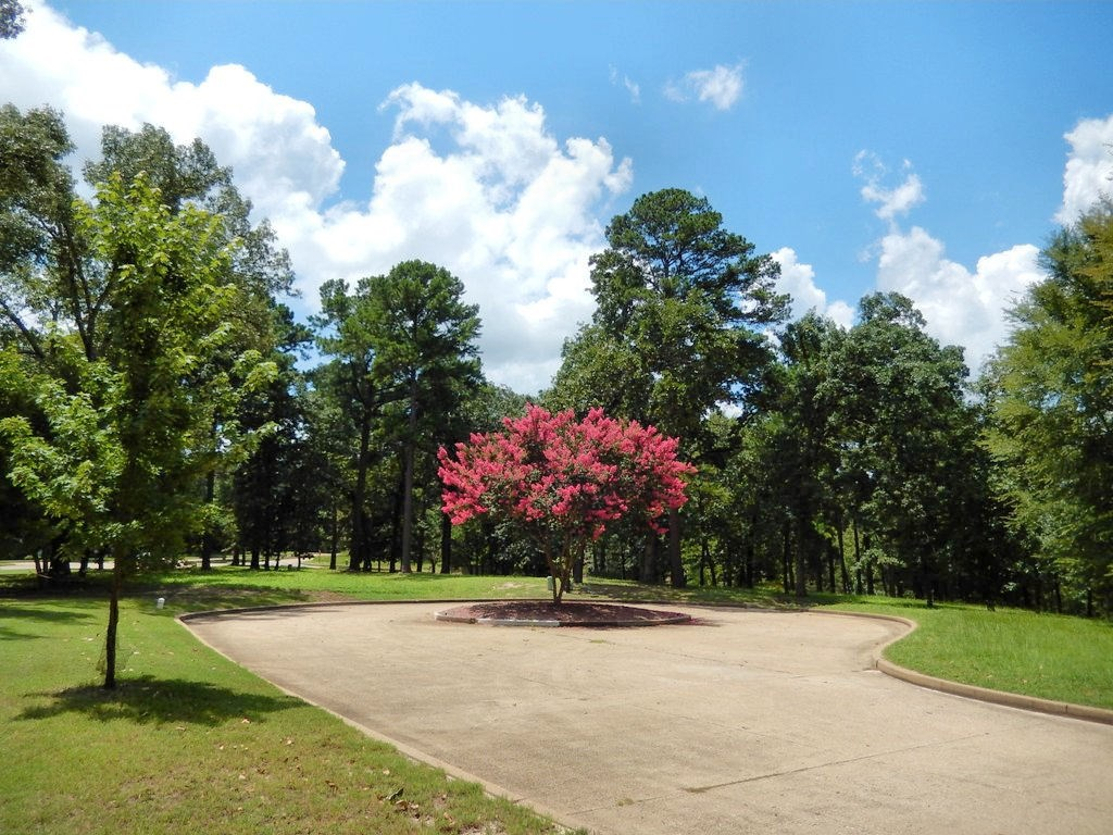 ESTATE SIZE WATERVIEW LOT FOR SALE ON EAST TEXAS LAKE