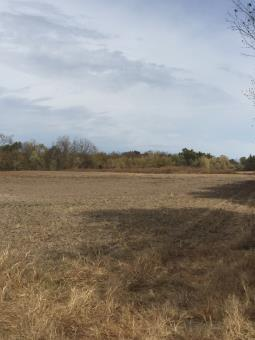 Cropland For Sale Mo, Whitetail Deer Hunting Mo