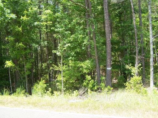 2.20 WOODED ACRES IN BLACKSTOCK, SC