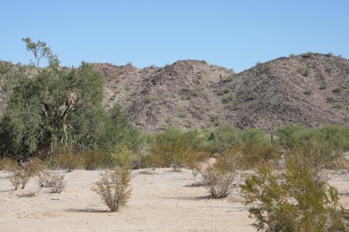 Land For Sale Maricopa Az, Acres For Sale Arizona