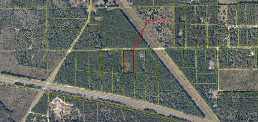 Secluded 5 Acre Near Major Employers in Suwannee County, FL