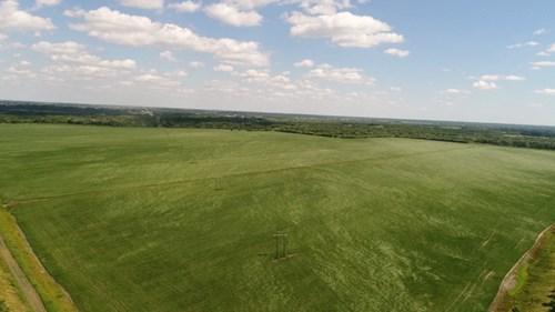 520+/- Bottom Row Crop Farm, LINN County, MO