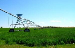 NORTH NEVADA LAND FOR SALE - IRRIGATED ALFALFA HAY FARM